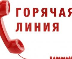 «Горячая линия» по вопросам защиты прав детей